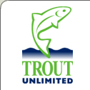 trout fishing michigan