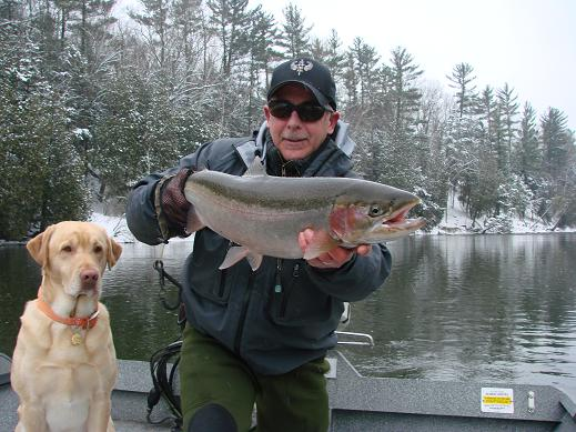 Muskegon river report guide fishing Salmon steelhead trout